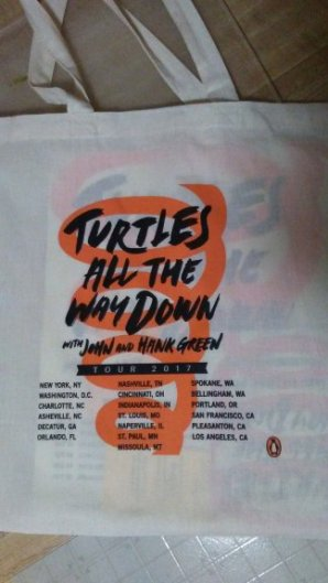 turtles bag