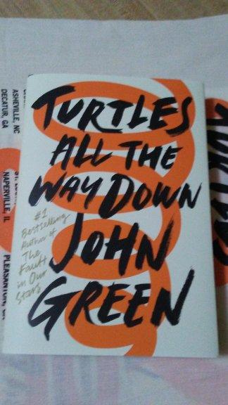 Turtles book