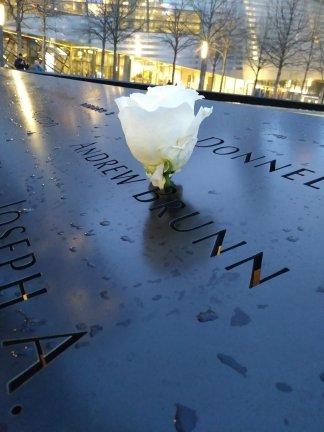 9-11 memorial rose