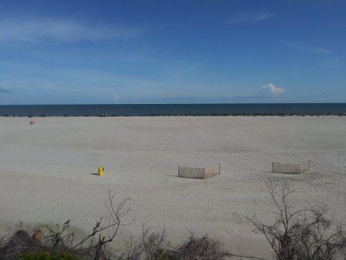 Charleston beach.jpg