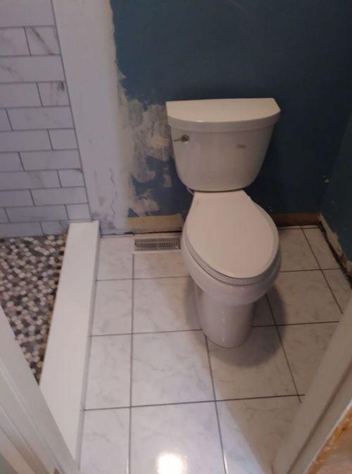 toilet restored